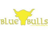 Blue Bulls_Logo